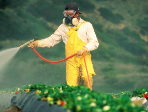 Kupovina i korištenje pesticida